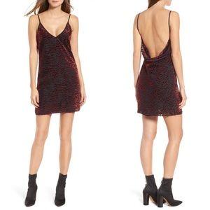 NEW WAYF Lamont Leopard Velvet Burnout Mini Dress